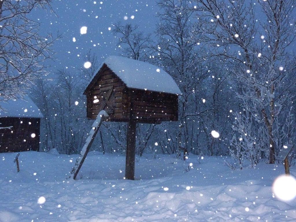 Sami-Hütte bei Abisko